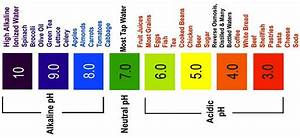 Alkaline vs. Acidic Which One Are You? - Laura London