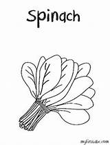Spinach Coloring Clipart Drawing Pages Sheets Flannel Boards Fresh Weather Cut Sheet Google Draw Clipartix Tornado Getdrawings Fruit Alphabet sketch template