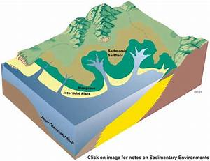 Sedimentary Environments In Tidal Creeks