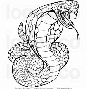 reptiles snakes drawing | Leonardo | Snake coloring pages ...