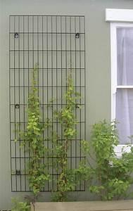 Support Plantes Grimpantes : treillis pour plantes grimpantes projet bureaux ubisoft ~ Dode.kayakingforconservation.com Idées de Décoration
