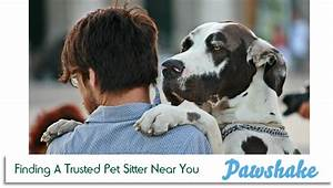 easy as a pawshake finding a trusted pet sitter near you With trusted dog sitters