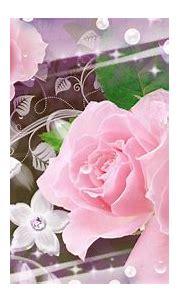 Google | Flower wallpaper, Wallpaper, Cover wallpaper