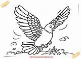 Pigeon Coloring Pages Printable Lh Am sketch template
