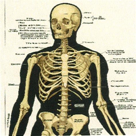 chambre pour fille ado papier peint beige panneau décoratif illustré de squelette