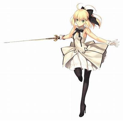 Lily Saber Fate Order Hollow セイバー Wikia