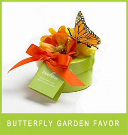 Butterfly Favor Favors Party Garden Gift Seed