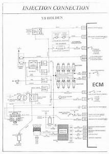 Vk Commodore Wiring Diagram