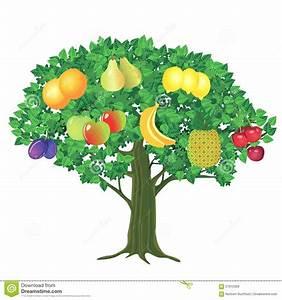 Arbre A Fruit : arbre fruitier illustration de vecteur illustration du plomb 57912358 ~ Melissatoandfro.com Idées de Décoration