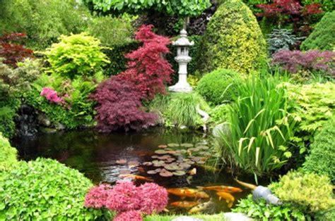 beautiful japanese garden and koi pond gardens