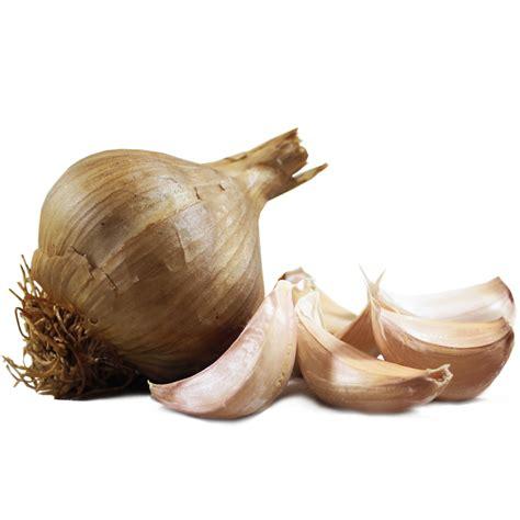 smoked garlic large bulbs  garlic farm uk isle  wight