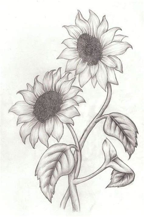 ideas  tutorials  easy flowers  draw