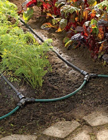 garden sprinkler system cost garden row drip irrigation snip n drip soaker system buy online in uae products in the uae