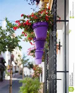Mur De Fleurs : fleurs dans le pot de fleurs ultra violet sur le mur image stock image du centrale dur e ~ Farleysfitness.com Idées de Décoration