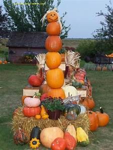 Pumpkin, Lady