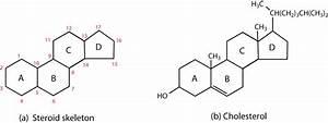 Chemistry  Steroids