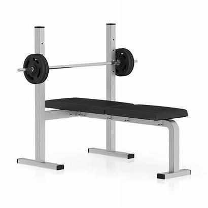Weight Bench 3d Flat Models Equipment Sports