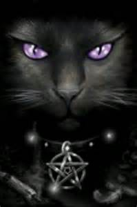 wiccan cat names stokes don t care for the pentagram on cat but she