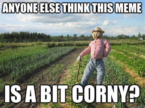 Corn Memes - scarecrow meme takes corn y humor to a whole new level