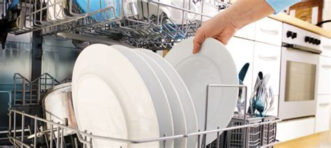 The Dishwasher Man   professional installation of