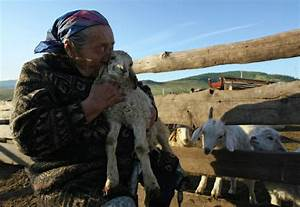 Tuva woman and her sheep - PRE-TEND Be curious