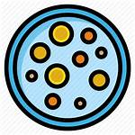 Microbiology Bacteria Icon Yeast Lab Transparent Pngio