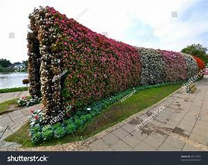 Thai Flower Tunnel Stock Photo 69417052   Shutterstock