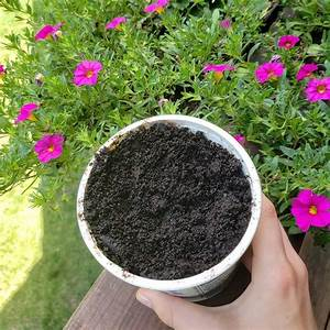 10 simple ways to use coffee grounds in the garden