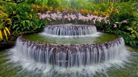 Singapore Botanic Gardens Location by Jardins Botaniques De Singapour D 233 Couvrez Singapour Avec