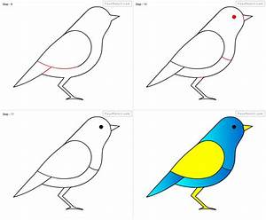 How To Draw A Bird Step By Step Drawing Pencil