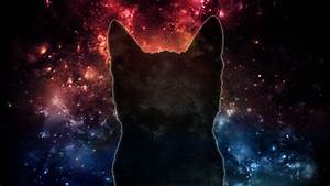Free Space Cat Wallpaper Photo « Long Wallpapers