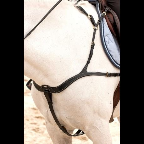 dyon breastplate anatomic chasse collier anatomique collar previous martingales breastplates dy breast