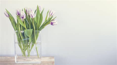 Welche Vase Für Tulpen by Hd Hintergrundbilder Tulpen Vase Wasser Tisch