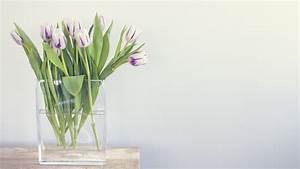 Tulpen In Vase : hd hintergrundbilder tulpen vase wasser tisch bl tenbl tter desktop hintergrund ~ Orissabook.com Haus und Dekorationen