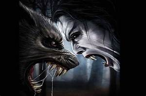 Are you a startup vampire or a werewolf? - Startup Daily