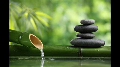 zen relax calm spa meditation relaxing music garden stress hours relaxation nature bamboo fondos meditate moment reiki sleep japan pour