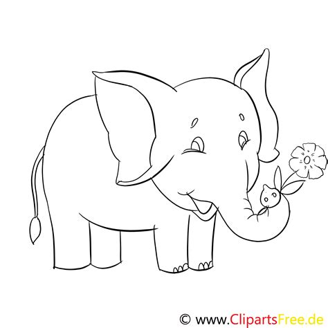 ausmalbilder lustige tiere im zoo elefant