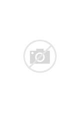 Monkey coloring page