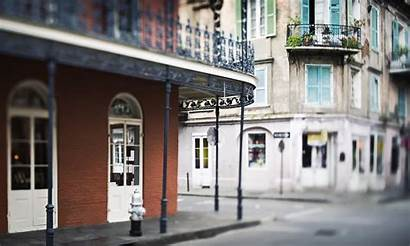Orleans Books Readers Picks Tennessee Williams Culture