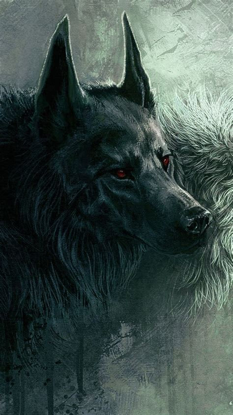 1080p Wolf Wallpaper Hd For Mobile by Wolf Wallpaper Mobile Best Wallpaper