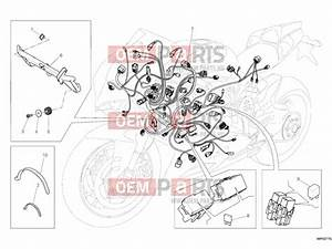 Ducati Superbike 1199 Panigale S Abs Wiring Harness  U00bb Wiring Harness Exploded Drawing  U0026gt  Oem