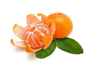 Clementine vs Mandarin Orange