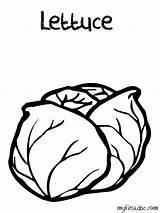 Coloring Lettuce Popular sketch template