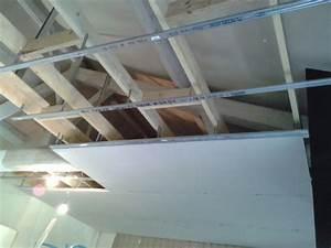 Plaque De Platre : plafond en plaque de platre maison travaux ~ Melissatoandfro.com Idées de Décoration