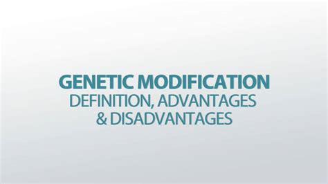 Modification Definition And Exles by Genetic Modification Definition Advantages