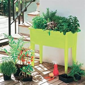 Plantes Amies Et Ennemies Au Potager : potager pour un balcon les plus beaux mod les marie claire ~ Melissatoandfro.com Idées de Décoration