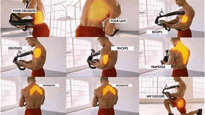 Core Gym Challenge Pain Minute Aging Smart