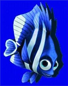 Four-Stripe Damselfish (Deb/Flo)