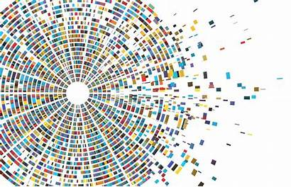 Genome Sequencing Sequence Coronavirus Race Decode