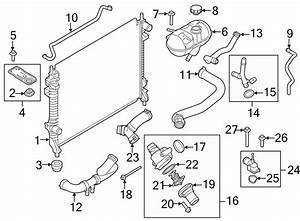 Ford Mustang Radiator Coolant Hose  Upper   2 3 Liter  5 0